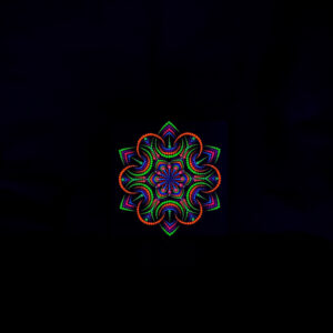 Night Flower UV Dot Painting (20cm x 20cm canvas)